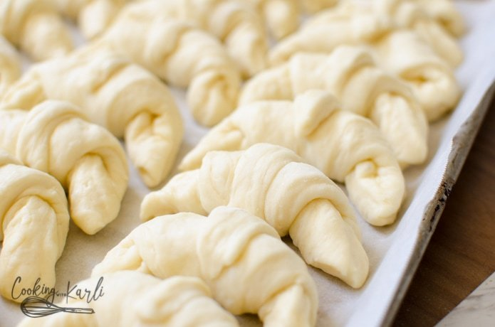Crescent roll dough rolled up and rising on a pan.