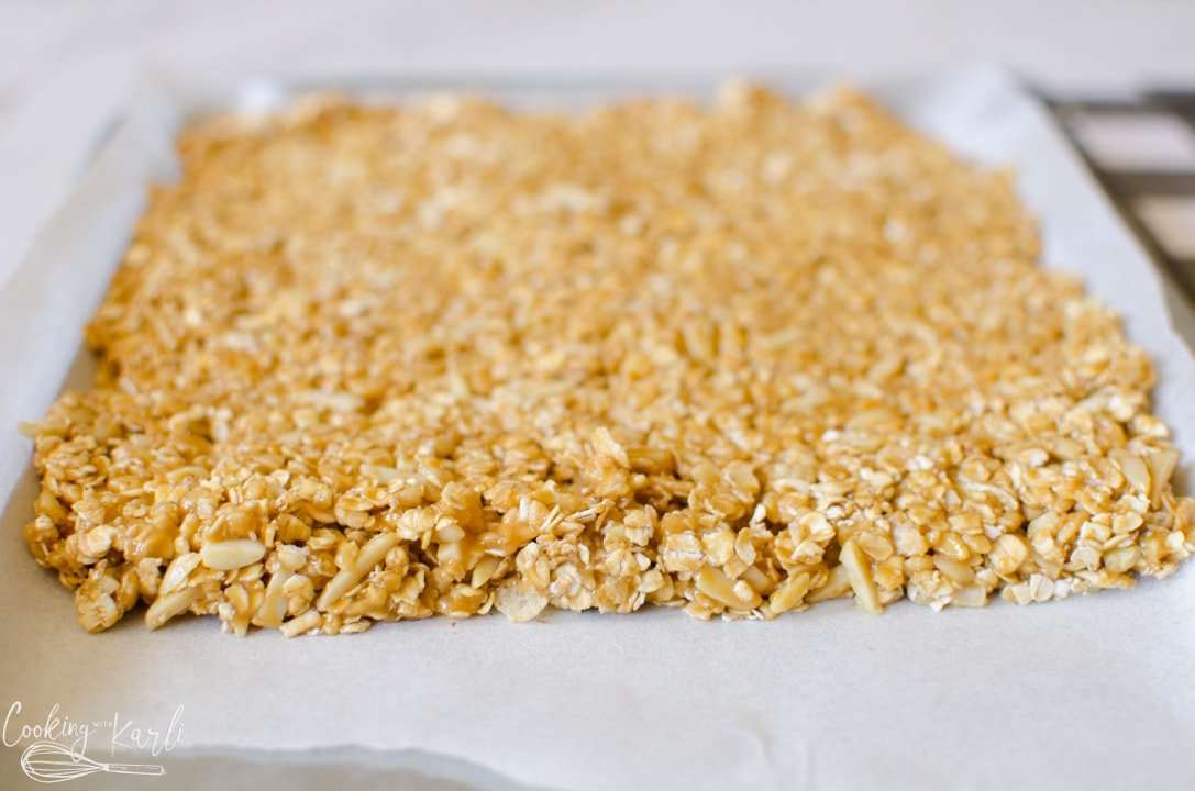 packed granola bars