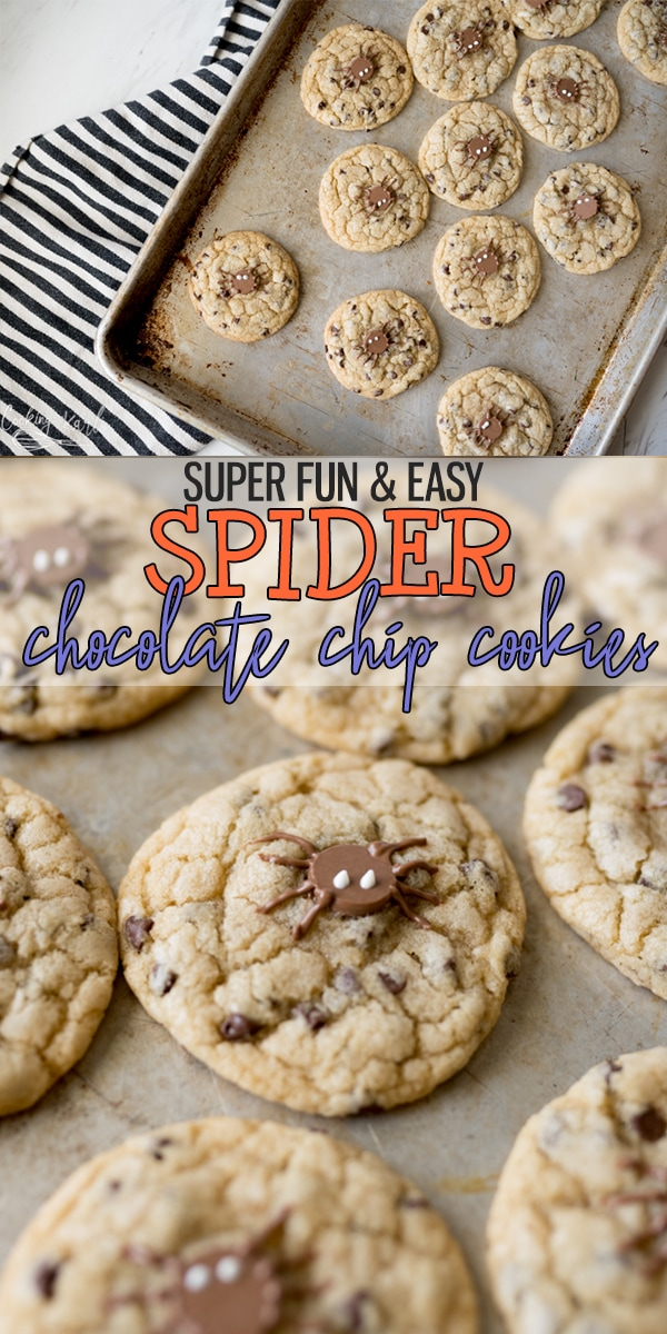 pin image for Spider cookies