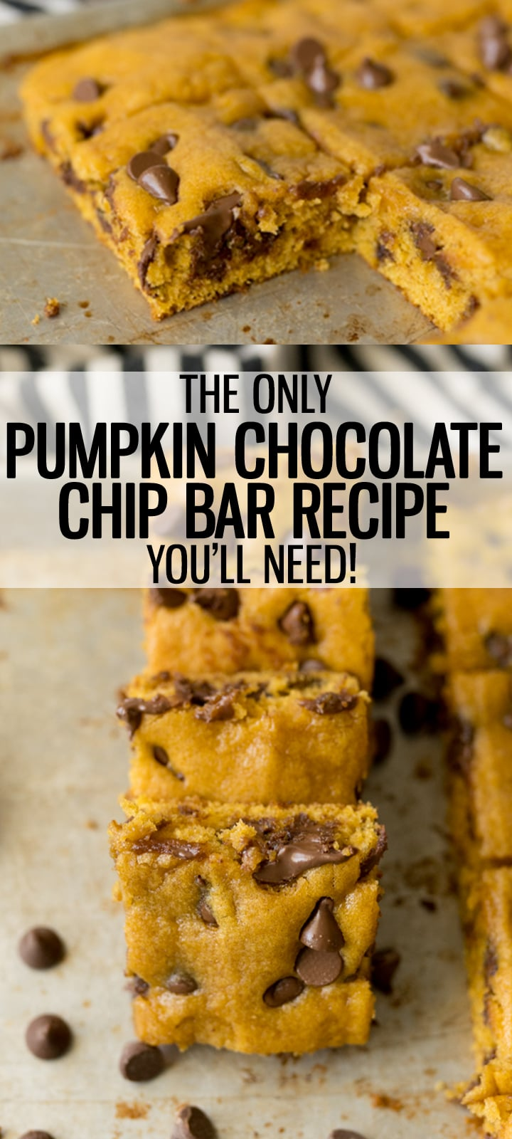 pin image for pumpkin chocolate chip cookie bars