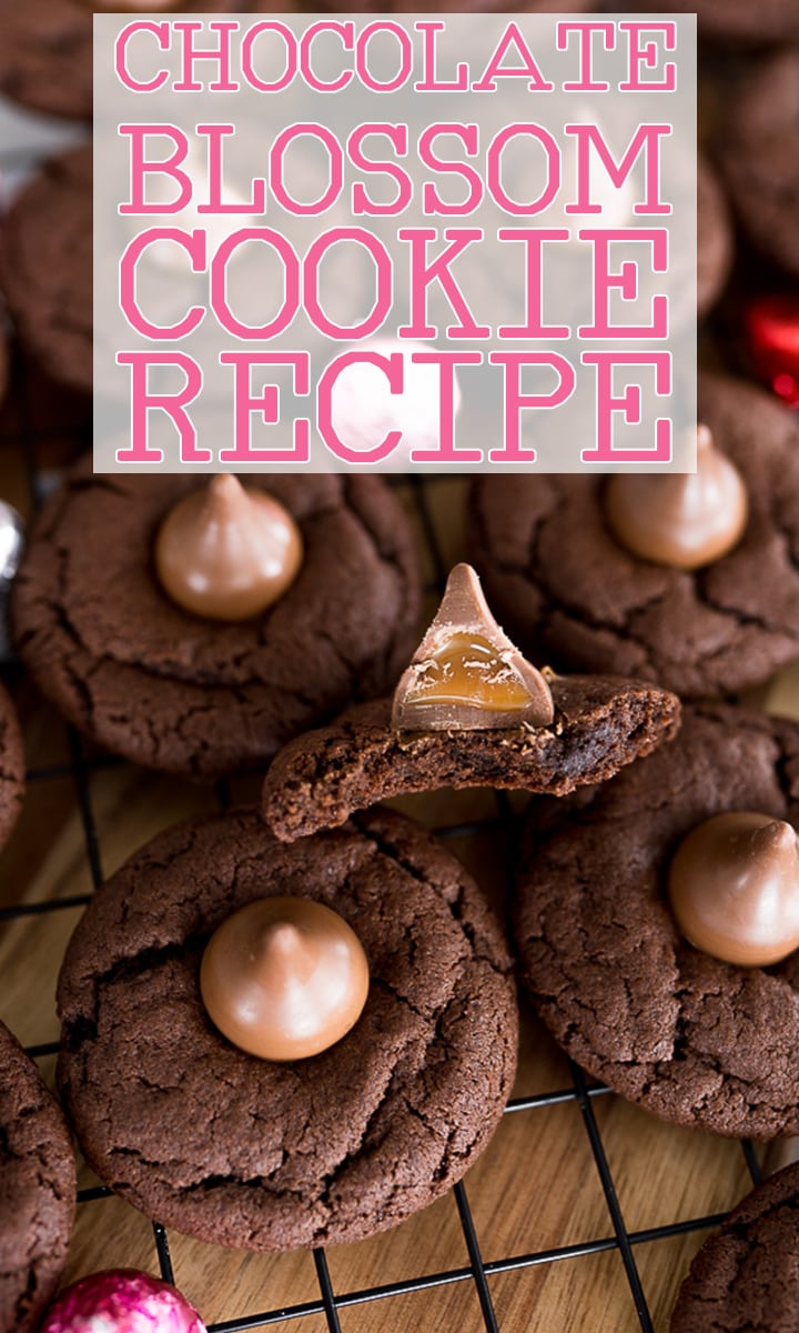 pin for chocolate blossom cookies